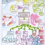 mind-map-amie